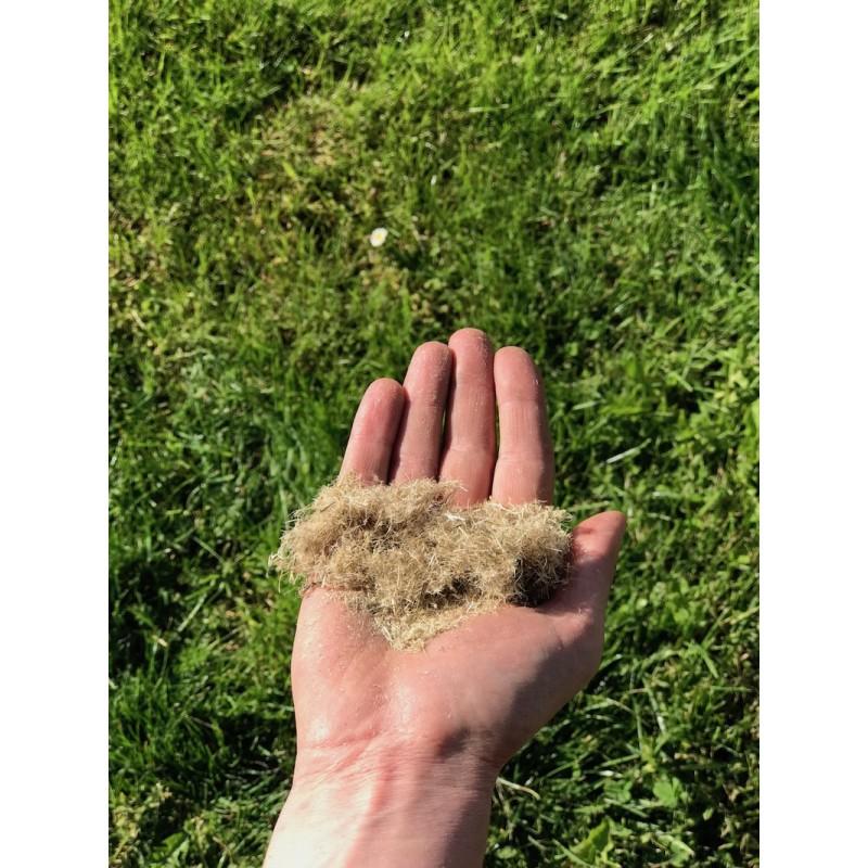 Chanvre Fibre courte 2/3 centimètre